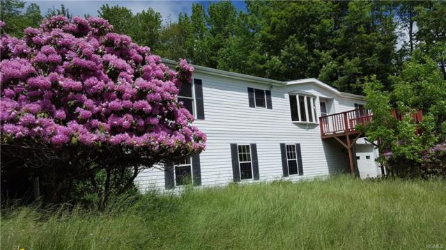 183 La Vista Drive, South Fallsburg, NY 12779 (MLS #4806439) :: Mark Boyland Real Estate Team