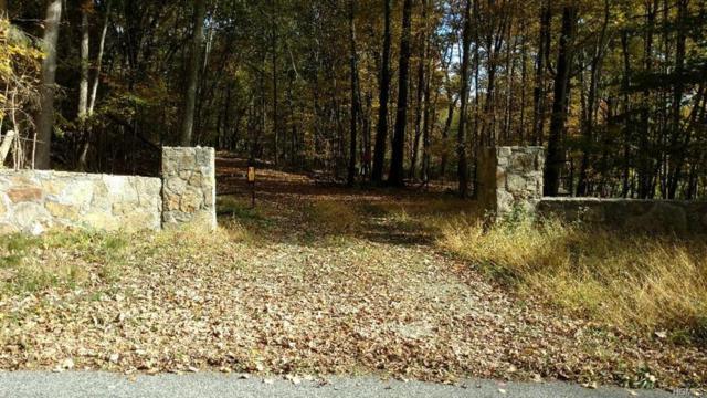 0 Horsepound Road, Kent Lakes, NY 10512 (MLS #4806443) :: Mark Boyland Real Estate Team