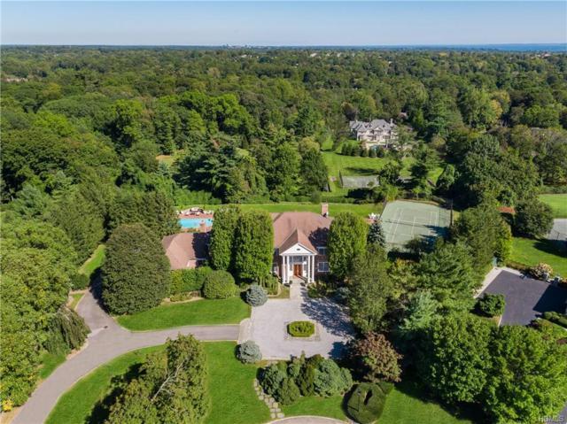 10 Star Farm Road, Purchase, NY 10577 (MLS #4806546) :: Mark Boyland Real Estate Team