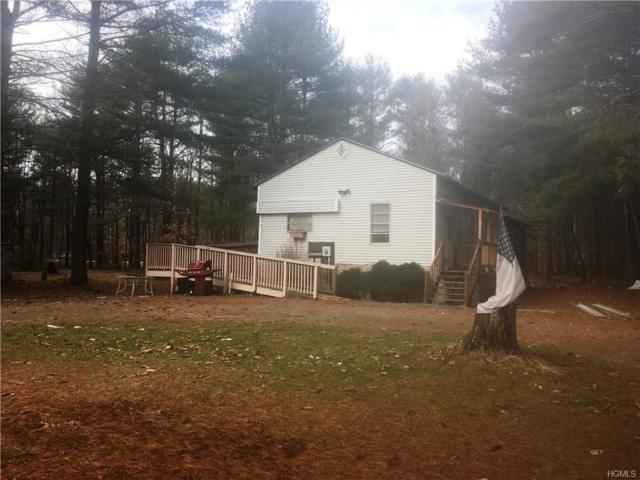 20 Travis Road, Cuddebackville, NY 12729 (MLS #4806588) :: Mark Boyland Real Estate Team
