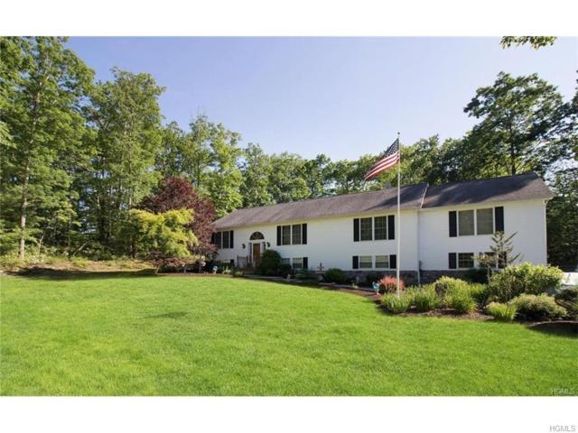 232 Echo Road, Bloomingburg, NY 12721 (MLS #4806665) :: Mark Boyland Real Estate Team