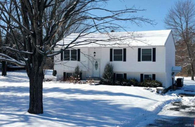 62 Patura Road, Modena, NY 12548 (MLS #4806783) :: Mark Boyland Real Estate Team