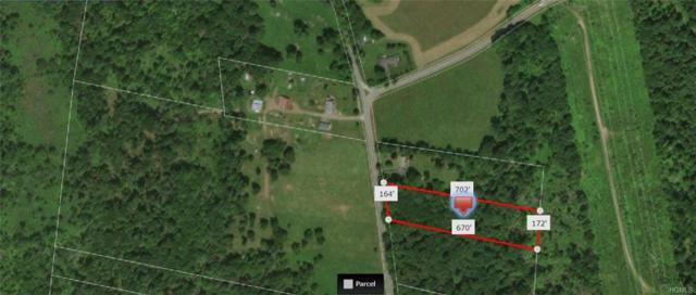 Lt. Brender Hwy, Bethel, NY 12720 (MLS #4806833) :: Mark Boyland Real Estate Team