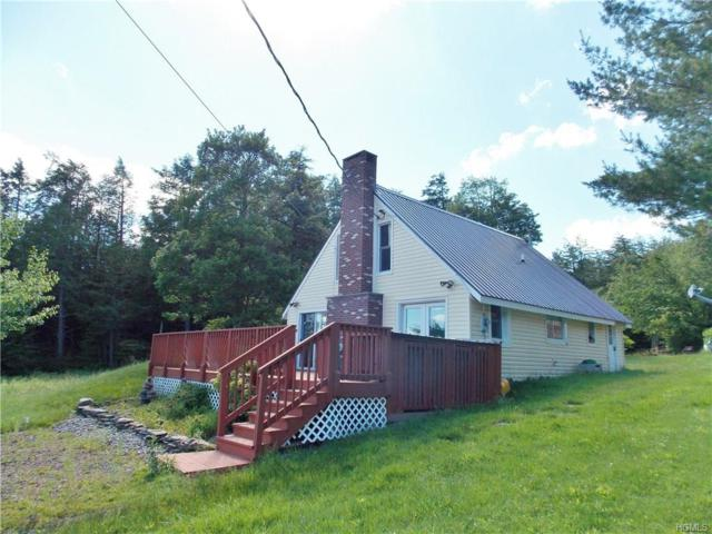 712 Red Hill Knolls Road, Grahamsville, NY 12740 (MLS #4806834) :: Mark Boyland Real Estate Team