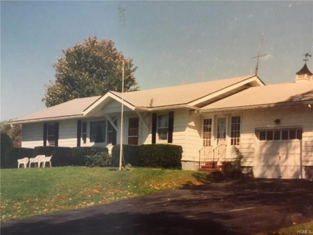74 Mohn Road, Narrowsburg, NY 12764 (MLS #4806946) :: Mark Boyland Real Estate Team