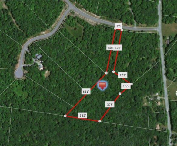 Pine Lake Drive, Wurtsboro, NY 12790 (MLS #4807161) :: Mark Boyland Real Estate Team