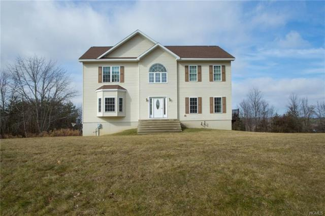 32 Upper Meadow Drive, Staatsburg, NY 12580 (MLS #4807170) :: William Raveis Legends Realty Group
