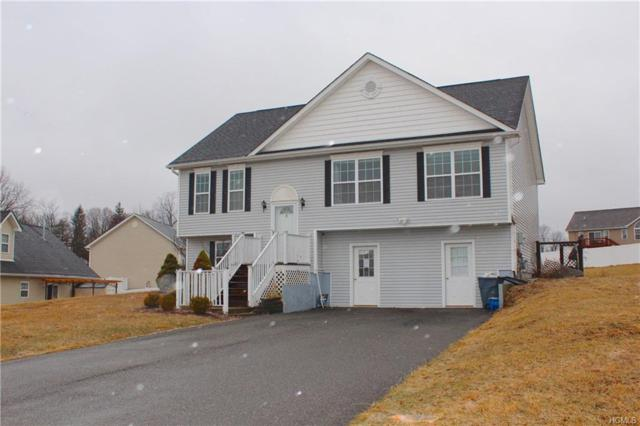 3 Mila Drive, Middletown, NY 10940 (MLS #4807254) :: The Anthony G Team