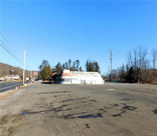 974 Route 17, Southfields, NY 10975 (MLS #4807382) :: Mark Boyland Real Estate Team