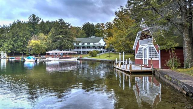 591 Oquaga Lake Road, Call Listing Agent, NY 13754 (MLS #4807448) :: Mark Boyland Real Estate Team