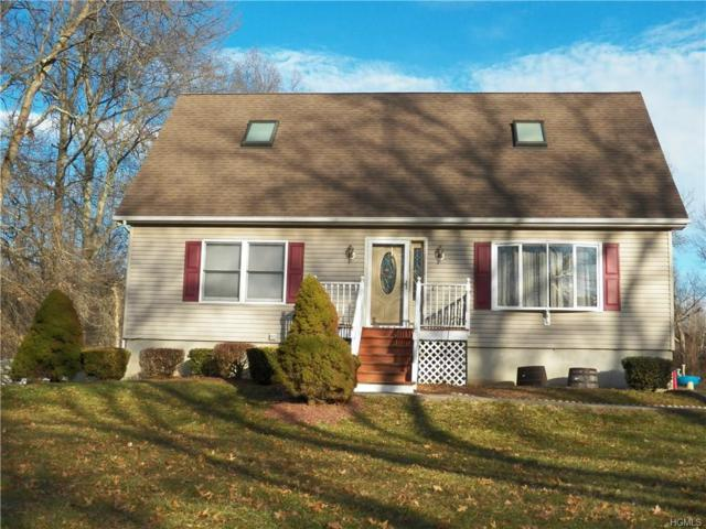 34 Rudolph Road, Modena, NY 12548 (MLS #4807748) :: Mark Boyland Real Estate Team