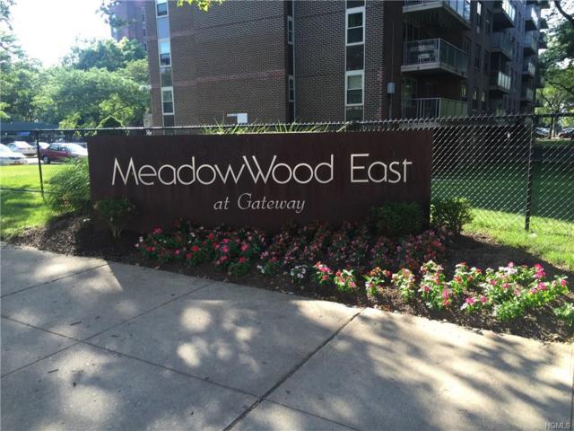 1075 New Jersey Avenue C, Call Listing Agent, NY 11207 (MLS #4807755) :: Mark Seiden Real Estate Team