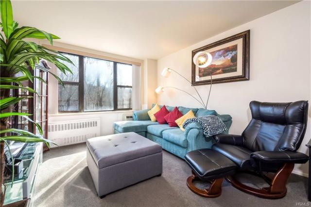 119 S Highland Avenue 2B, Ossining, NY 10562 (MLS #4807772) :: Mark Boyland Real Estate Team