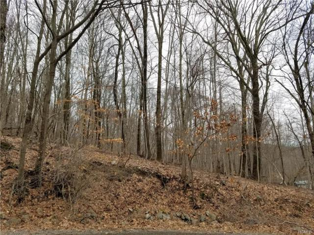 Lot 6 Hammond Hill Road, Dover Plains, NY 12522 (MLS #4807838) :: Mark Seiden Real Estate Team