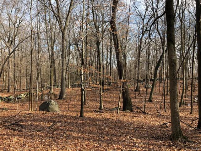 163 Hickory Kingdom Road, Bedford, NY 10506 (MLS #4807974) :: Mark Boyland Real Estate Team