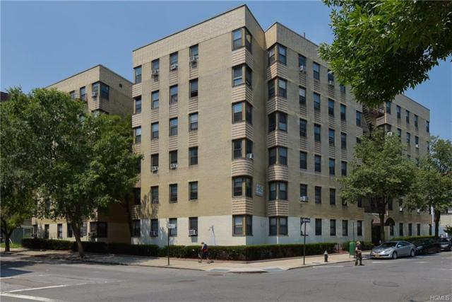 340 E Mosholu Parkway 2-J, Bronx, NY 10458 (MLS #4808571) :: Mark Boyland Real Estate Team