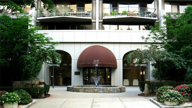 15 Stewart Place 12J, White Plains, NY 10603 (MLS #4808633) :: William Raveis Baer & McIntosh