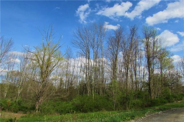 Lot 13 Cushman Road, Pawling, NY 12564 (MLS #4809174) :: Michael Edmond Team at Keller Williams NY Realty