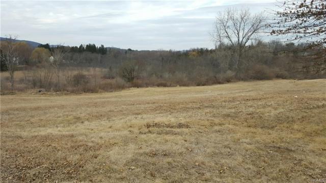9 Vista, Patterson, NY 12563 (MLS #4809492) :: Mark Boyland Real Estate Team