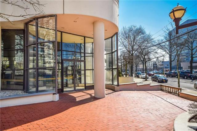 10 Cottage Place 11B, White Plains, NY 10601 (MLS #4809547) :: Mark Seiden Real Estate Team