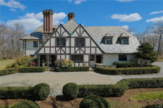 254 Hamilton Road, Chappaqua, NY 10514 (MLS #4809550) :: Mark Boyland Real Estate Team
