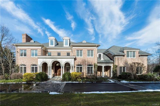 16 Patriots Farm Place, Armonk, NY 10504 (MLS #4809652) :: Michael Edmond Team at Keller Williams NY Realty