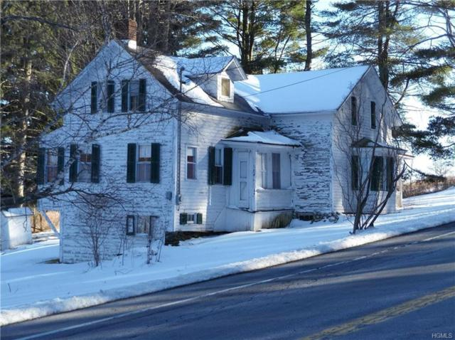 10430 State Route 22, Hillsdale, NY 12529 (MLS #4809697) :: Mark Boyland Real Estate Team