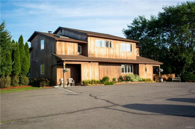 258 Maybrook Road, Campbell Hall, NY 10916 (MLS #4809707) :: Mark Boyland Real Estate Team