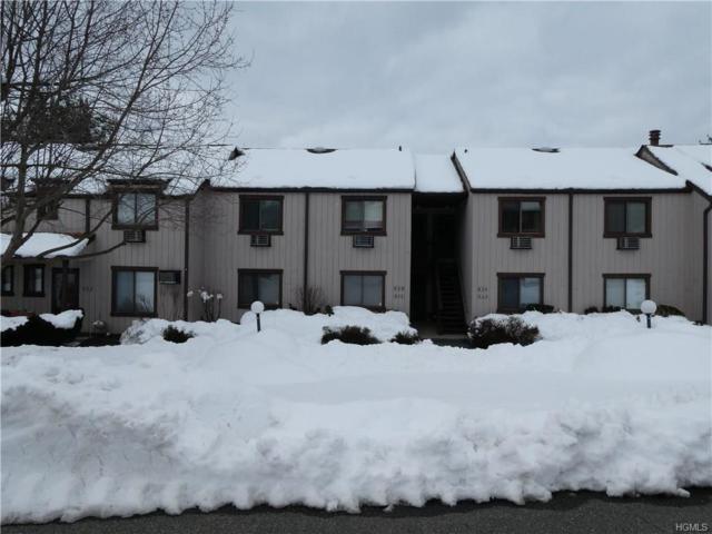 804 Swan Hollow Road, Monroe, NY 10950 (MLS #4809819) :: Mark Boyland Real Estate Team
