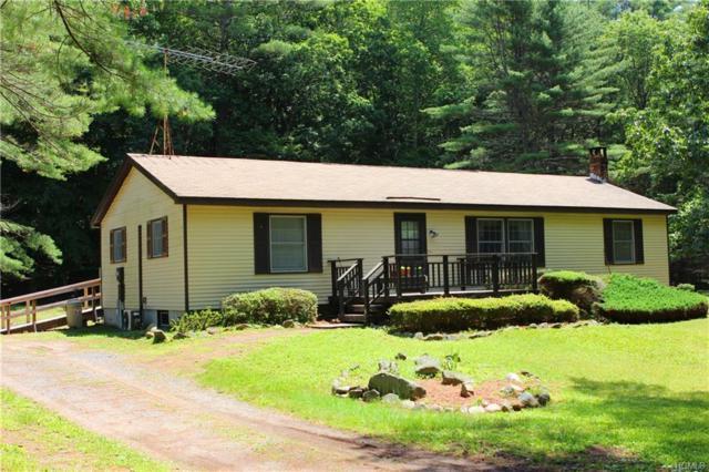 840 Oakland Valley Road, Cuddebackville, NY 12729 (MLS #4810085) :: Mark Boyland Real Estate Team