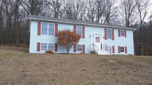 293 Huckleberry Turnpike, Wallkill, NY 12589 (MLS #4810089) :: Mark Boyland Real Estate Team