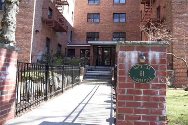 61 White Oak Street 1-G, New Rochelle, NY 10801 (MLS #4810496) :: Mark Boyland Real Estate Team