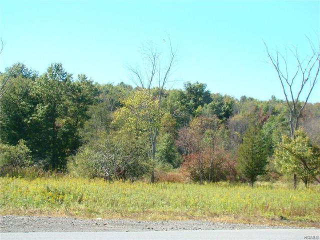 Nys Rte 94, Blooming Grove, NY 10914 (MLS #4810520) :: William Raveis Baer & McIntosh