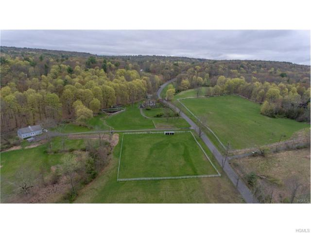 115 Buck Road, Stone Ridge, NY 12484 (MLS #4811081) :: Mark Boyland Real Estate Team