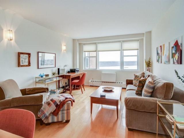 5800 Arlington Avenue 21A, Bronx, NY 10471 (MLS #4811113) :: Mark Boyland Real Estate Team