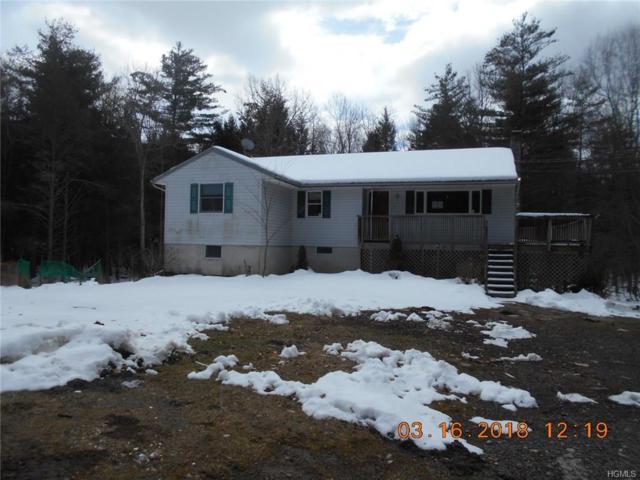156 Shin Hollow Road, Port Jervis, NY 12771 (MLS #4811357) :: Mark Boyland Real Estate Team