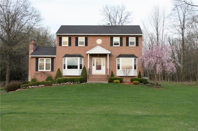 10 Hilo Drive, Campbell Hall, NY 10916 (MLS #4811802) :: Mark Boyland Real Estate Team