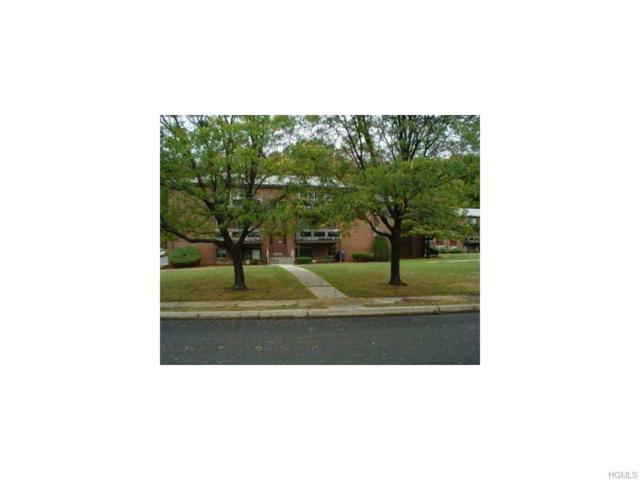 24 Tanager Road #2406, Monroe, NY 10950 (MLS #4811810) :: William Raveis Baer & McIntosh