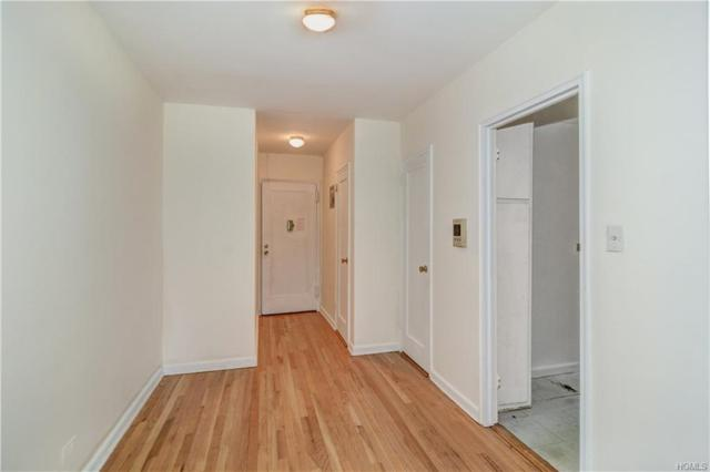 5645 Netherland Avenue 3E, Bronx, NY 10471 (MLS #4811874) :: William Raveis Legends Realty Group