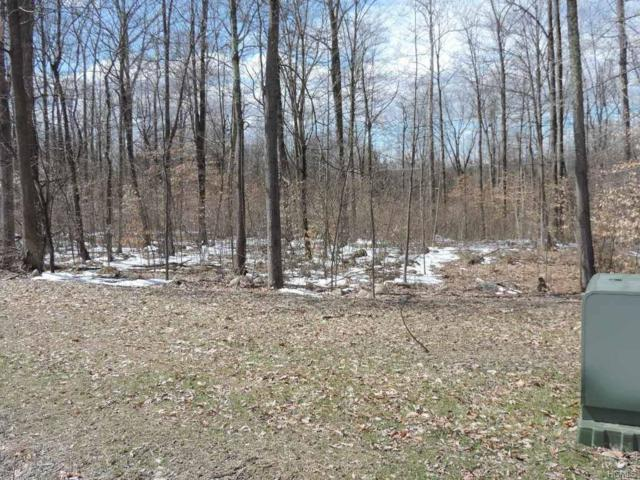 30 Emily (Lot 15) Drive, Wallkill, NY 12589 (MLS #4811901) :: Mark Boyland Real Estate Team