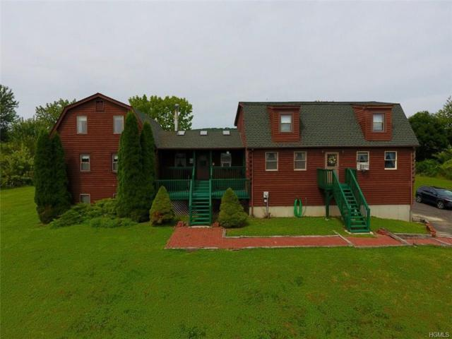 46 Mulberry Lane, Milton, NY 12547 (MLS #4812002) :: Mark Boyland Real Estate Team