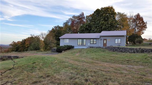 275 Mutton Hill Road, Neversink, NY 12765 (MLS #4812074) :: Mark Boyland Real Estate Team