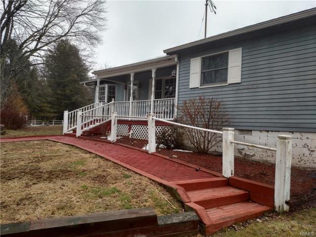 197 Rod & Gun Club Road, Forestburgh, NY 12777 (MLS #4812567) :: Mark Boyland Real Estate Team