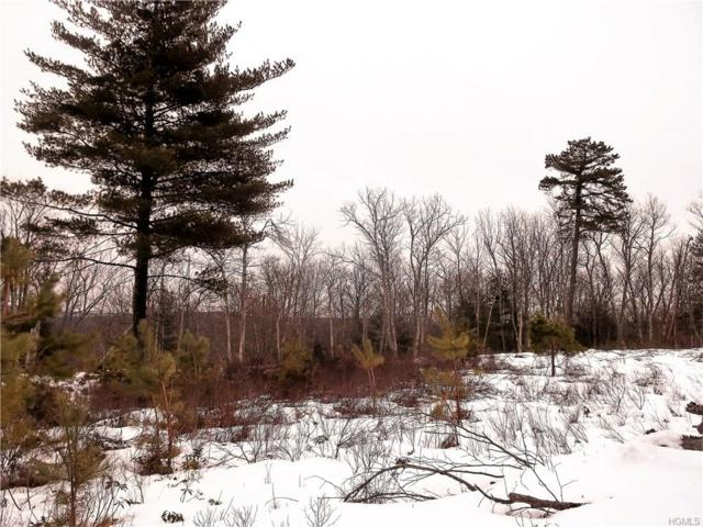 Big Rock Drive, Wurtsboro, NY 12790 (MLS #4812648) :: Mark Boyland Real Estate Team