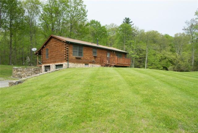 162 Cart Road, Dover Plains, NY 12522 (MLS #4812936) :: Mark Boyland Real Estate Team
