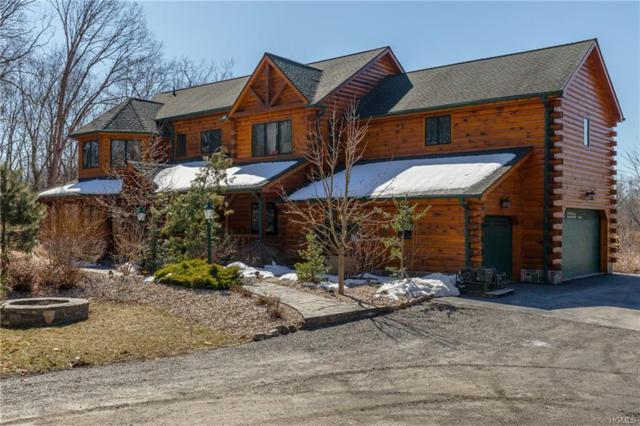 162 Crum Elbow Road, Hyde Park, NY 12538 (MLS #4813263) :: Mark Boyland Real Estate Team