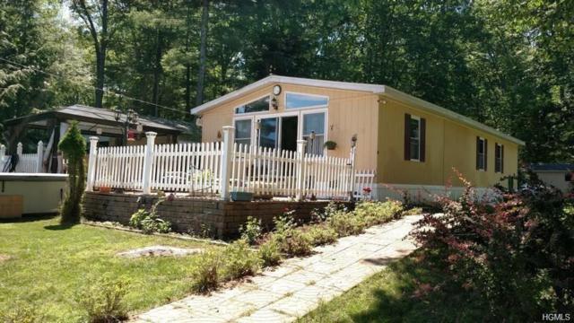 204 W Mohican Trail, Glen Spey, NY 12737 (MLS #4813327) :: Mark Boyland Real Estate Team