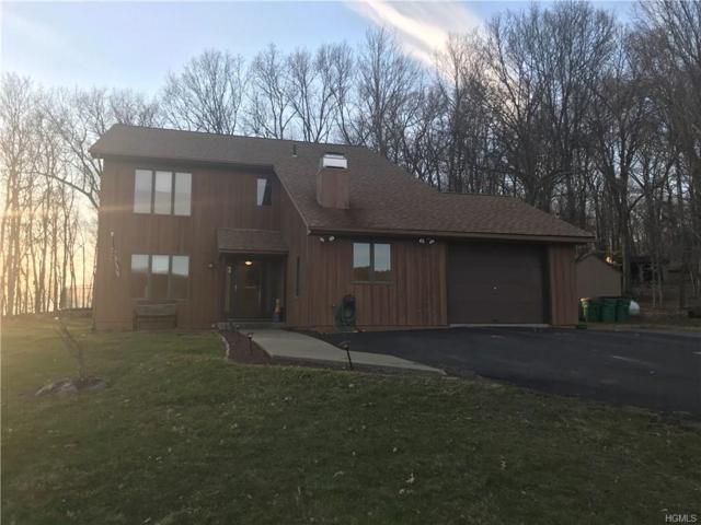 181 Walsh Road, Lagrangeville, NY 12540 (MLS #4813432) :: Mark Boyland Real Estate Team