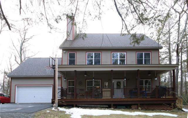 201 N Shore Road, Rock Hill, NY 12775 (MLS #4813470) :: Mark Boyland Real Estate Team