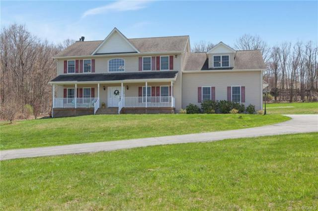 357 Mt Orange Road, Middletown, NY 10940 (MLS #4813538) :: William Raveis Legends Realty Group